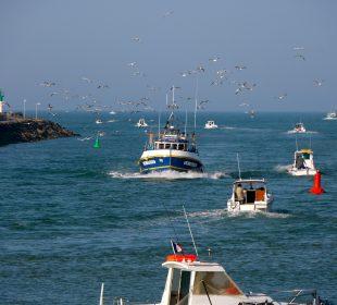 Profiter de la mer pendant son séjour au camping en Vendée
